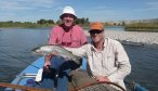 Madison River Fly Fishing, Montana Angler