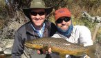 brown trout holding