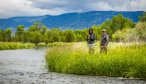 Montana Angler Full Day Trips