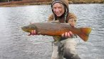Montana Angler, Yellowstone River Fly Fishing