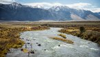 Madison River View fall