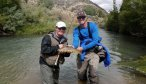 fly fishing the ruby river