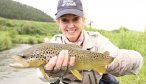 musselshell brown trout