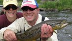 big willow creek browntrout