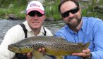 willow creek brown trout