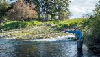 montana guided creek fishing