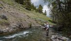 Fly Fishing a Montana Ranch