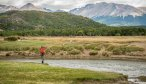 Dry fly fishing in Argentina