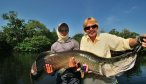 fly fishing for arapaima