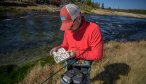 fly fishing yellowstone national park guide