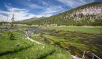 Yellowstone Park fly fishing guide