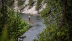 Yellowstone Park fishing guide