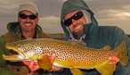 Big Madison Brown Trout