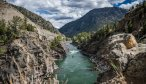 Yellowstone River guided fishing trips