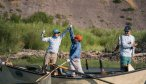 Yellowstone River fly fishing guides