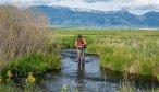 Montana Angler, Montana Fishing Vacations