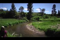 Small Stream Dry Fly Fishing