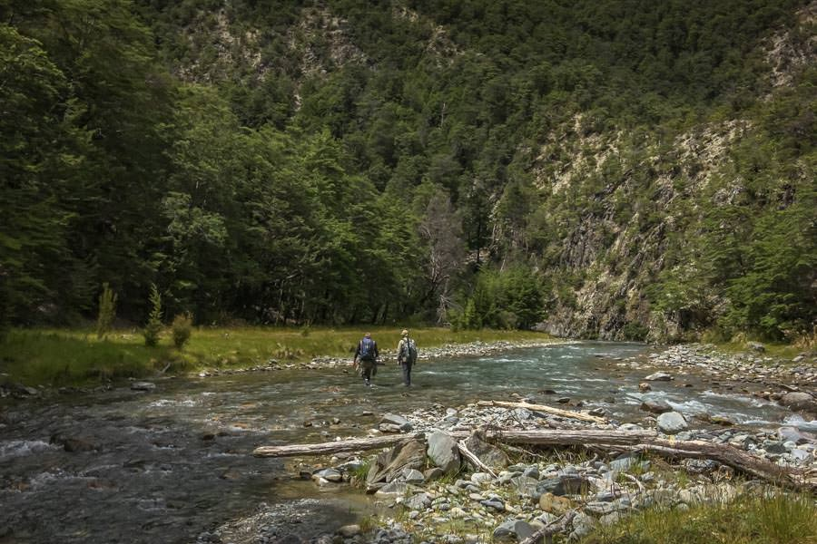 New Zealand guided fly fishing trips