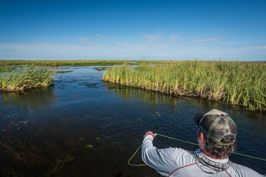 Ibera Marsh fly fishing