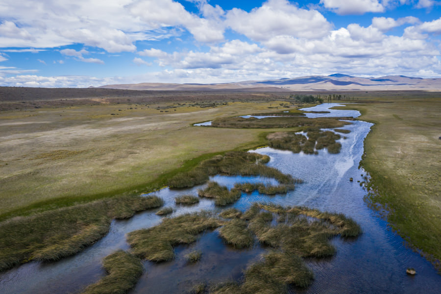 Arroyo Pescado is located in the high grassland pampas east of the Andes. Its productive spring fed waters are infested with large trout
