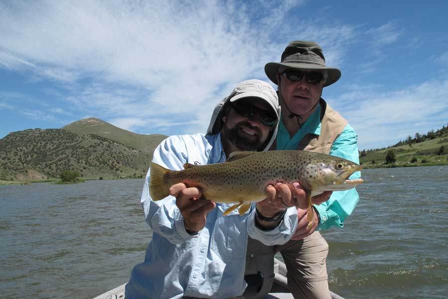 Brown Trout taken on a streamer