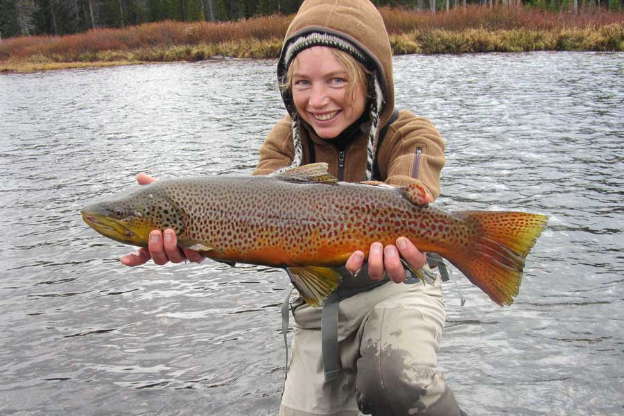 november fishing in montana montana angler