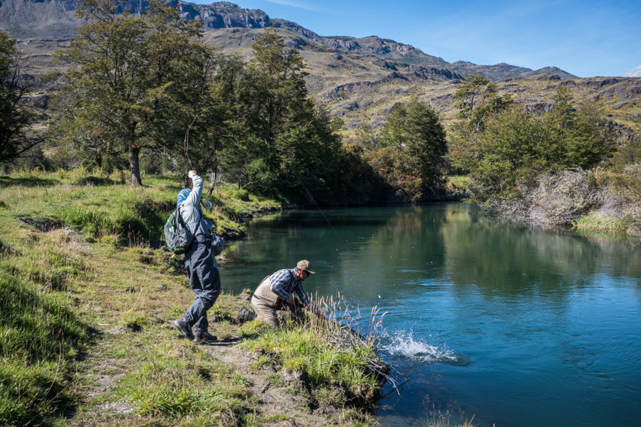Sight fishing to wild trout on the Cochrane River in Chile