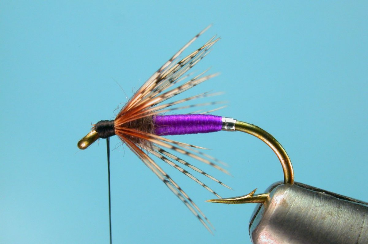 Charlie Craven's Purple Soft Hackle